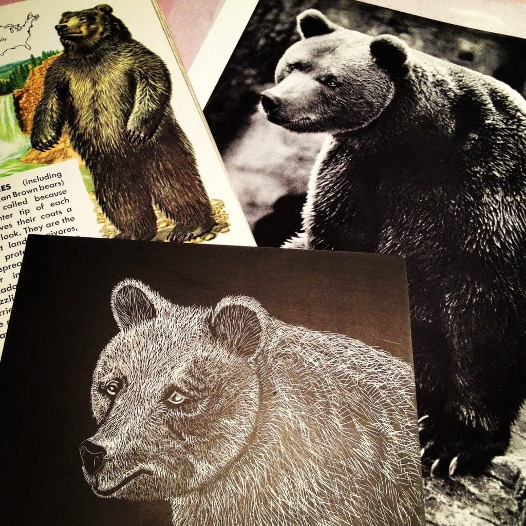Scratch Board Bear Inspiration
