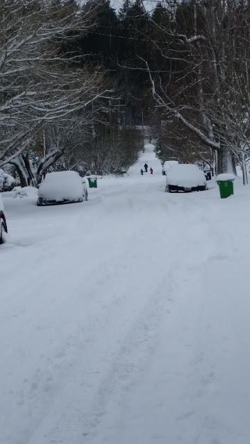 Sledders In Mt Tabor neighborhood after snowfall