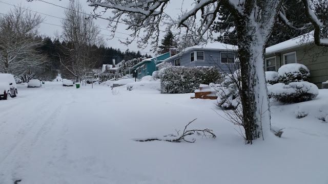Neighborhood with snow