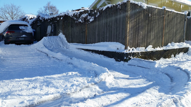 Home made half pipe in front yard
